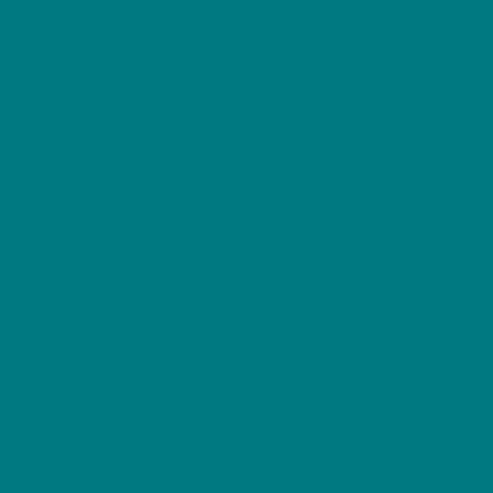 NCS S 4040 B40G