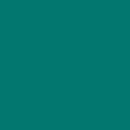 4040 B70G