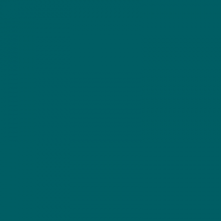 4550 B40G