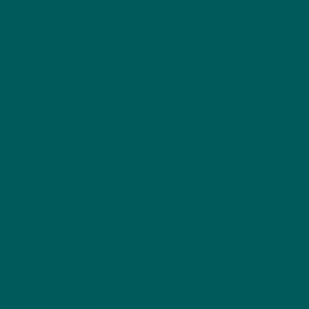 4550 B50G