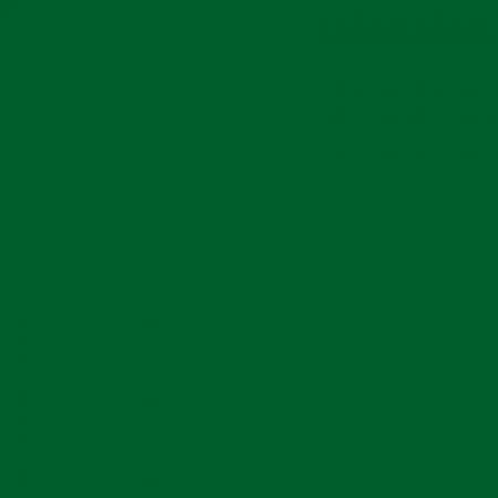 4550 G10Y